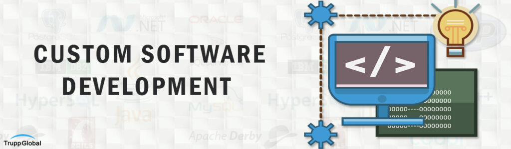 How Custom Software is changing the face of Business Development